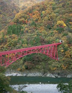山彦橋と紅葉 黒部峡谷の写真素材 [FYI04012764]
