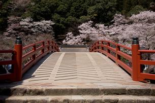 室生寺へ渡る太鼓橋。の写真素材 [FYI04014401]