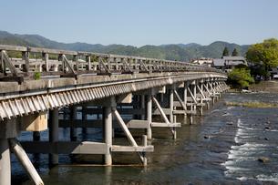 中之島の桂川に架かる渡月橋の写真素材 [FYI04014413]