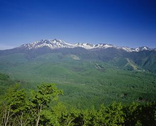 乗鞍岳 乗鞍高原より望むの写真素材 [FYI04014642]