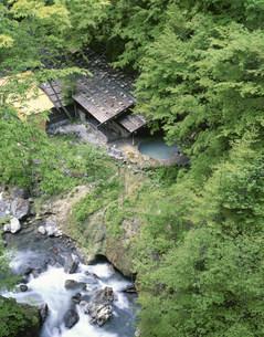 公共野天風呂 白骨温泉の写真素材 [FYI04014645]