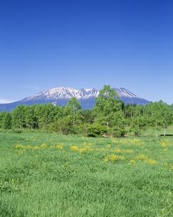 御岳山と開田高原の写真素材 [FYI04014716]