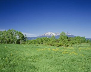 御岳山の写真素材 [FYI04014718]