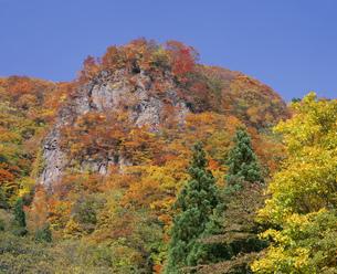 紅葉の山 妙高高原の写真素材 [FYI04014749]