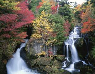 龍頭の滝の写真素材 [FYI04014781]
