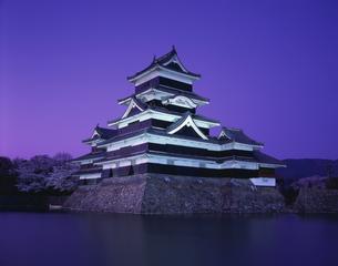 松本城の夜景 松本市   4月の写真素材 [FYI04014968]