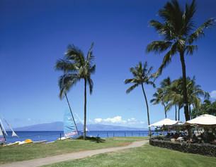 カーナパリビーチの写真素材 [FYI04015623]