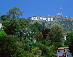 ハリウッドの大看板の写真素材 [FYI04015737]