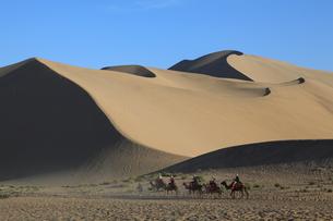 鳴沙山 駱駝と砂丘の写真素材 [FYI04016500]