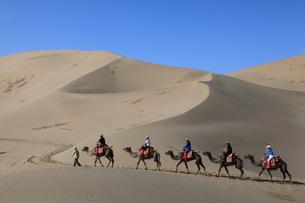 鳴沙山 駱駝に乗る観光客の写真素材 [FYI04016515]