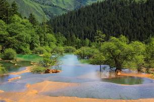 黄龍の玉翠彩池の写真素材 [FYI04016640]