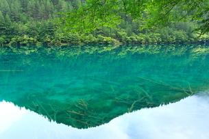 九寨溝の鏡海の写真素材 [FYI04016643]