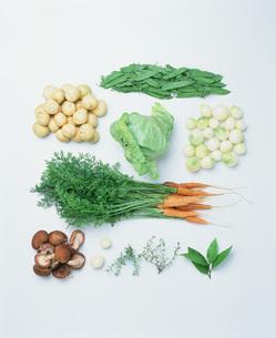 野菜の写真素材 [FYI04016806]