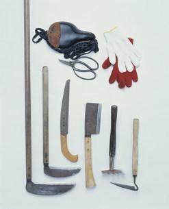 畑仕事の道具の写真素材 [FYI04016875]