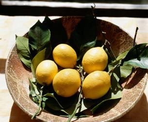 レモンの実 器入りの写真素材 [FYI04016960]