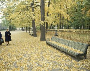 マルスの広場 サンクトペテルブルグ ロシアの写真素材 [FYI04017146]