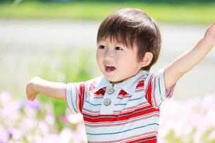 手を上げる男の子の写真素材 [FYI04018502]