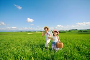 大草原を手をつなぎ歩く兄妹の写真素材 [FYI04018561]