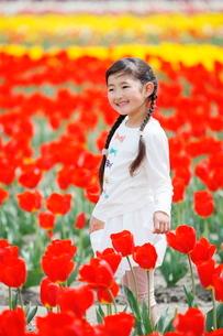 チューリップ畑で笑う女の子の写真素材 [FYI04018616]