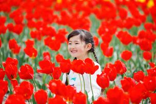 チューリップ畑で笑う女の子の写真素材 [FYI04018618]