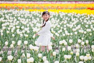 チューリップ畑で笑う女の子の写真素材 [FYI04018619]
