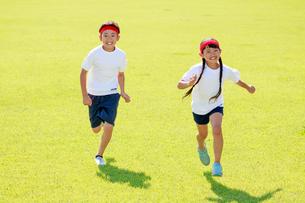 体操着で芝生の上を走る子供たちの写真素材 [FYI04018802]