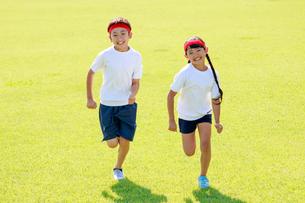 体操着で芝生の上を走る子供たちの写真素材 [FYI04018803]