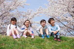 桜の木の下に座る子供たちの写真素材 [FYI04018812]