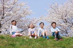 桜の木の下に座る子供たちの写真素材 [FYI04018813]