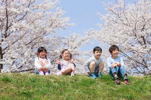 桜の木の下に座る子供たちの写真素材 [FYI04018815]