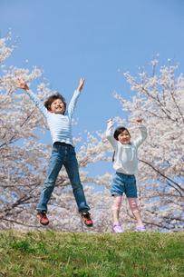 桜の木の下でジャンプする子供たちの写真素材 [FYI04018817]