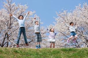 桜の木の下でジャンプする子供たちの写真素材 [FYI04018820]