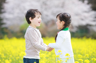 菜の花畑で遊ぶ子供たちの写真素材 [FYI04018831]
