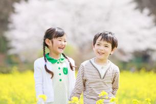 菜の花畑で笑う子供たちの写真素材 [FYI04018833]