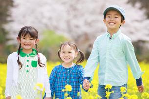 菜の花畑で笑う子供たちの写真素材 [FYI04018837]