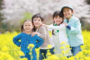 菜の花畑で笑う子供たちの写真素材 [FYI04018842]