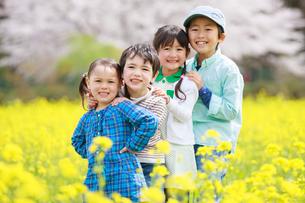菜の花畑で笑う子供たちの写真素材 [FYI04018845]