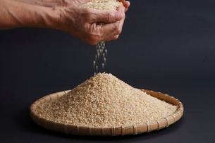 手のひらからこぼれる米の写真素材 [FYI04018858]