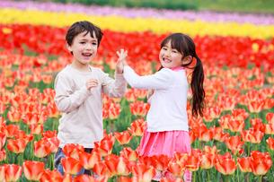 チューリップ畑で遊ぶ子供たちの写真素材 [FYI04018870]