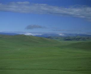 草原の道の写真素材 [FYI04019000]