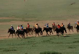 ナーダム子供競馬の写真素材 [FYI04019015]