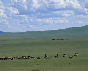 草原の写真素材 [FYI04019021]
