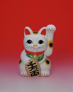 招き猫の写真素材 [FYI04019074]