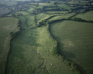 ブルゴーニュ地方の田園風景(航空写真) 6月  フランスの写真素材 [FYI04019249]