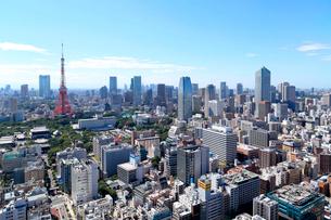 東京タワーと都心の景観の写真素材 [FYI04019276]