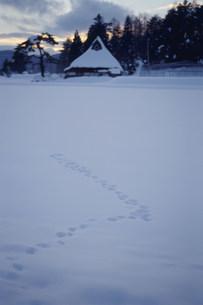 雪原の足跡と民家の写真素材 [FYI04019537]