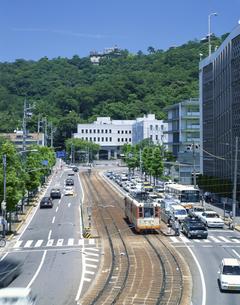 市内電車と松山城 松山市 8月の写真素材 [FYI04019894]
