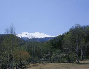一ノ瀬公園より乗鞍岳の写真素材 [FYI04020745]