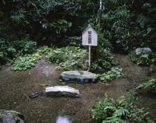 菊水霊泉の写真素材 [FYI04020828]