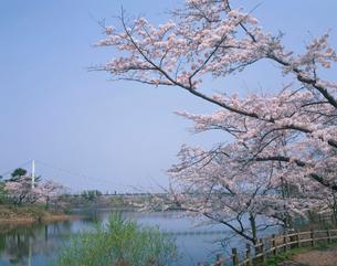 芦野公園の写真素材 [FYI04020851]